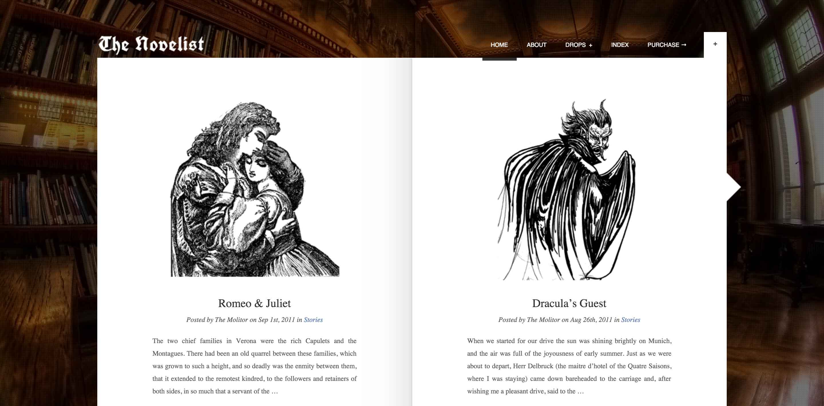 the novelist wordpress themes for writers