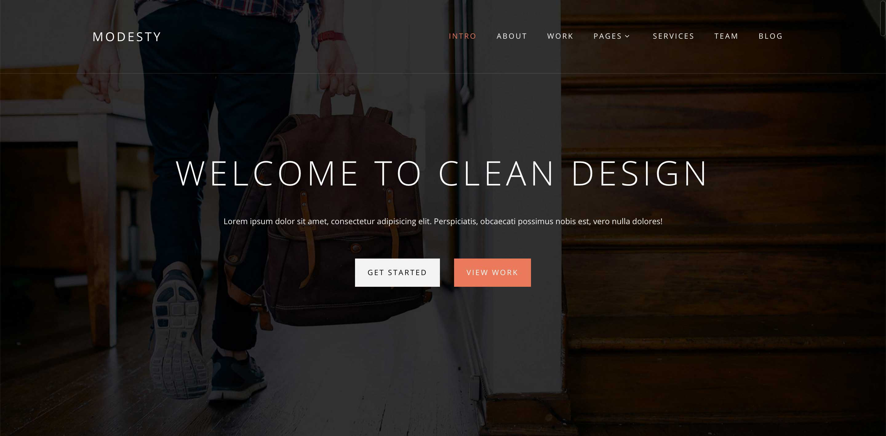 modesty one page wordpress themes