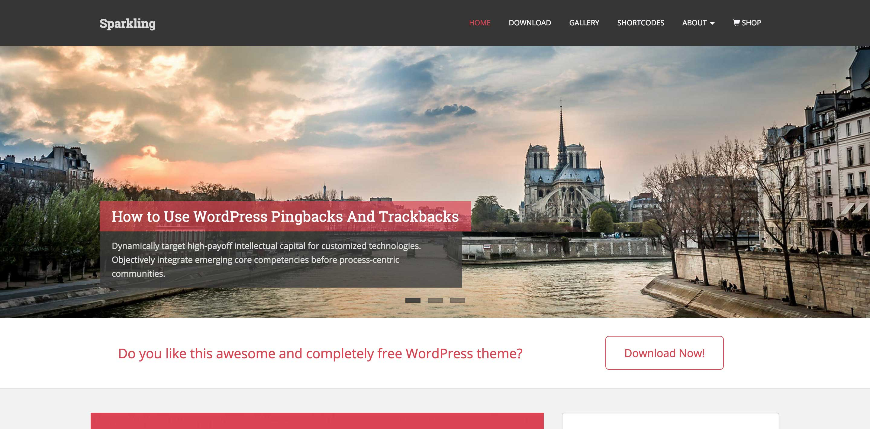 sparkling free magazine wordpress themes